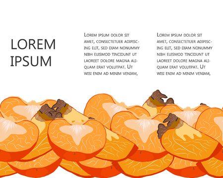 Sliced juicy persimmon seamless horizontal border with copy space vector illustration. Orange sharon fruit set for design, banner, menu, poster.  イラスト・ベクター素材