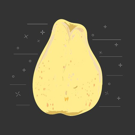 Yellow chinese whole pear on a black background vector illustration. Summer fruit set for design, banner, menu, poster.