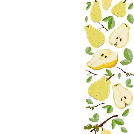 Yellow pears whole with leaves seamless vertical border on white background. Summer fruit design set for design, banner, menu, poster, apparel, cards.  イラスト・ベクター素材