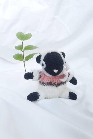Sheep on  white background Stock Photo - 16835627