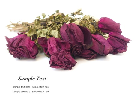 Dried roses isolated on white background  Stock Photo