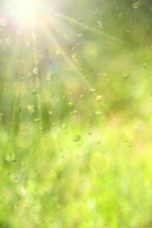 Water druppels op glazen venster. Stockfoto
