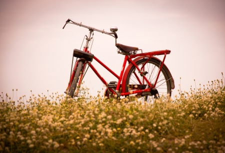 classic bicycle standing in field of grass.