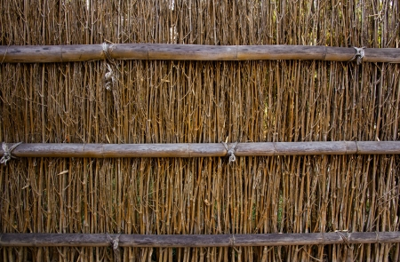 Bamboo texture for background or backdrop use photo