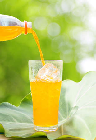 orange juice glass: Pour of orange juice falling into a glass on leaves ,outdoor Stock Photo
