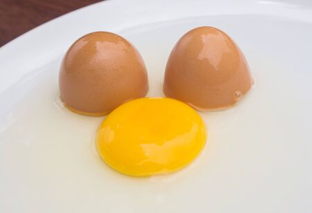 albumin: Cracked chicken egg with yolk and egg shell