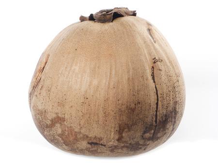 Ripe coconuts on white.