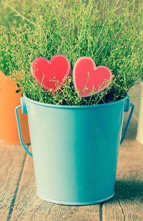 Valentines Day background with hearts shape and flower.