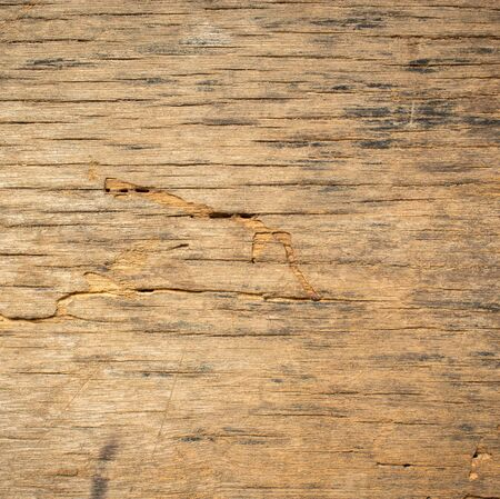 old wood texture and background .