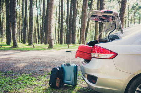 silver car on the pine forest road  with luggage. Travel concept Stock Photo