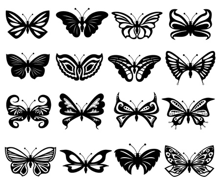Set of sixteen different black and white beautiful butterflies. Hand drawing vector illustration Vector
