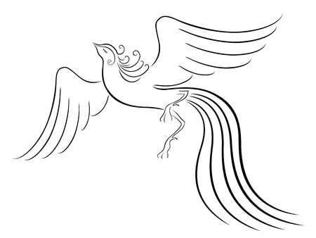Black graceful Firebird contour isolated over white  Hand drawing vector illustration Vector