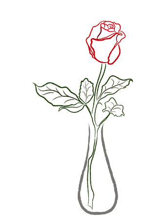 Stylized red rose in a vase isolated on white background, hand drawing vector illustration