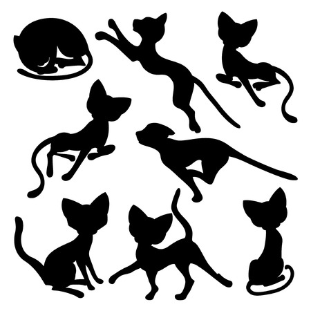 Set of eight black silhouettes of funny cats isolated on a white  Vector