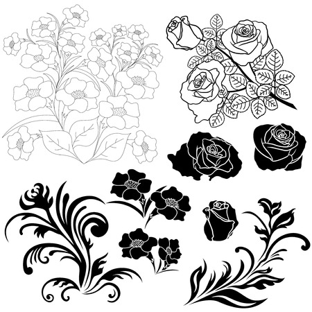 Set of isolated floral elements for design, vector illustration hand drawing