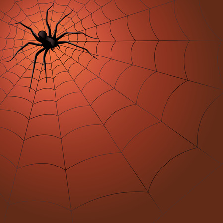 Big dark spider on the web, hand drawing Halloween vector illustration Vector