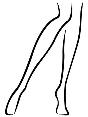 is slender: Abstract vector outline of the slender female barefoot feet Illustration