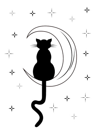 long night: Black cat with long tail sitting on the moon among night starry sky, black and white carton vector illustration