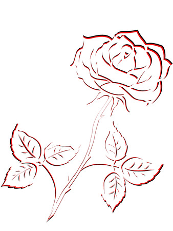 sepals: Black and red outline of single rose flower isolated on a white background, vector illustration