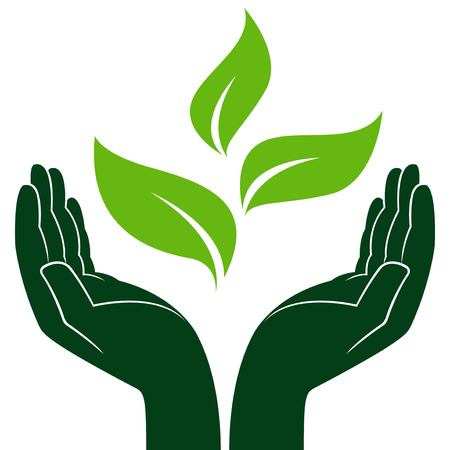 ecologic: Green young plant in human hands, conceptual ecologic vector illustration