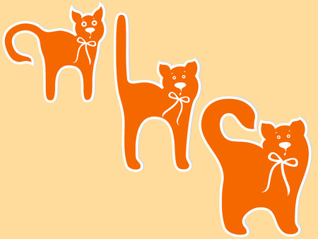 Stages of cat maturing, cartoon vector illustration