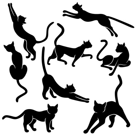 Set of eight black vector silhouettes of funny domestic cats in different poses on a white background, hand drawing illustration