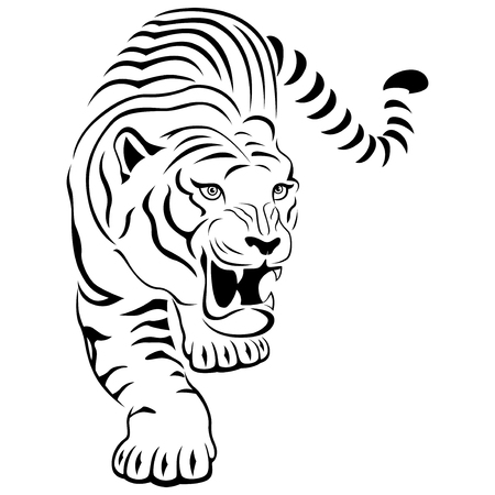 paws: Aggressive concealed large tiger on the hunting, hand drawing vector outline isolated on a white background
