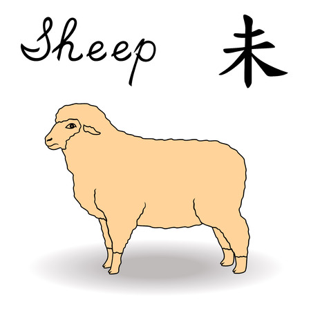 year of sheep: Eastern Zodiac Sign Sheep, symbol of New Year in Chinese calendar, hand drawn vector artwork isolated on a white background Illustration