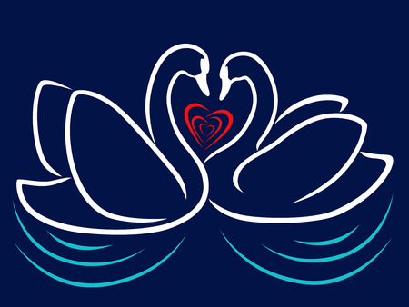 Loving couple of swans floating on the water and red heart between theirs, stylized Valentine vector illustration