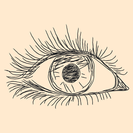 Human eye, hand drawn vector sketch on the beige background