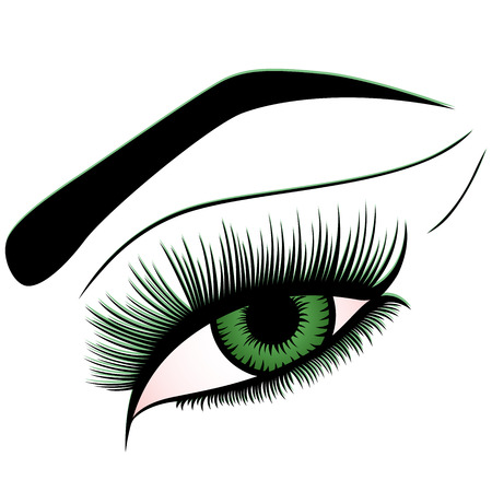 Human eye with green iris, vector design element isolated on the white background Illustration
