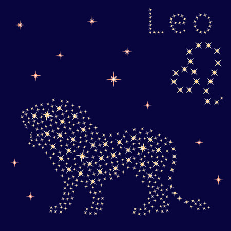 Zodiac sign Leo on a background of the starry sky, vector illustration
