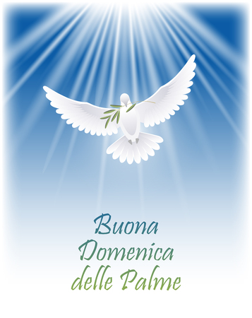 Happy Palm Sunday in Italian. Greeting card with white flying dove and olive branch. Vector illustration. Vettoriali