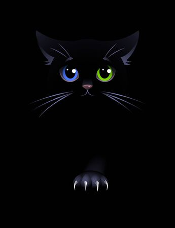Black cat on the black background. Black cat with eyes of different colors. Vector illustration.