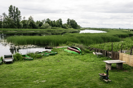 Nature reserve. Bulrush and sprig trees reflecting in a lake. Beautiful Lotos. Several small boats. Untouched Nature. Old small Draw Well. Stock Photo