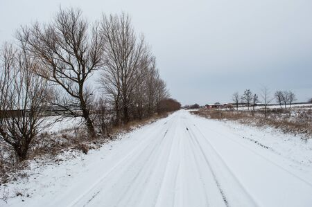 Snowed Road to the Farm with ruts bordered by trees Winter a cold day Winter landscape. Trees in hoarfrost. Country road. Cold season.