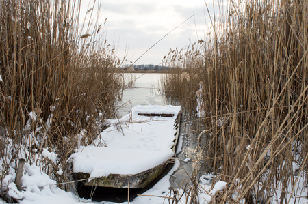 A boat full of snow stands between reed on a frozen lake in a cold winter day Banco de Imagens