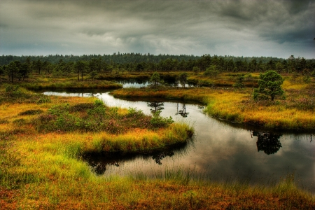 Latvian nature