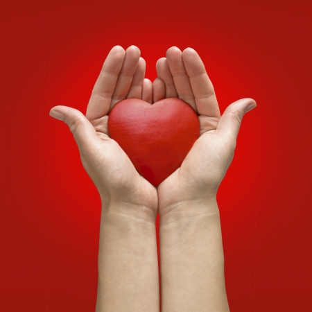 Woman hands holding heart isolated on white background Stock Photo - 17702652