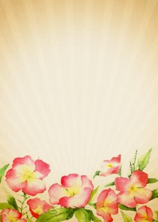 老式花卉背景与红色的花在水彩技术。A4纸打印。