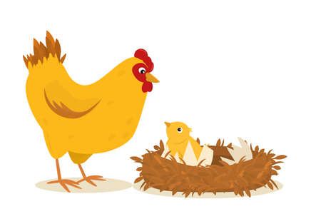 illustration of a chicken standing next to a nest of chickens