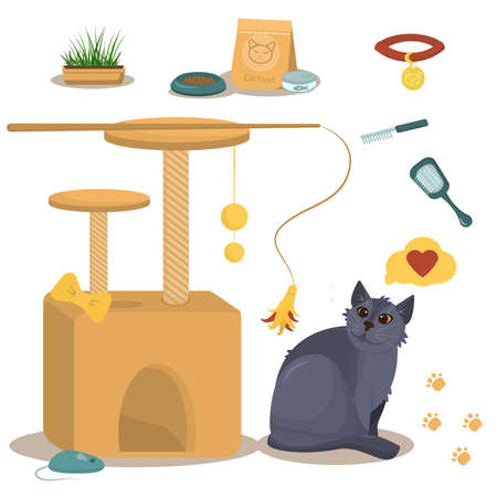 vector illustration on the theme of domestic cats. British gray cat along with a cat house, food and toys for the cats who live in the house.