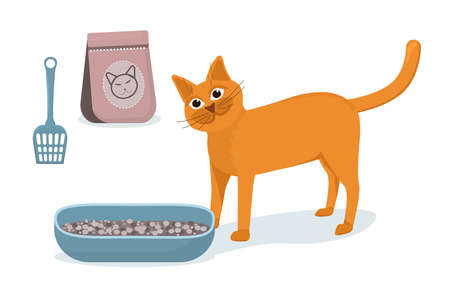vector illustration of a red cat standing next to a cat toilet and a bag of filler, isolated on a white background
