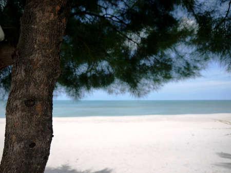 sea bright photo