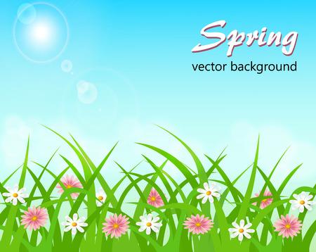 Lente landschap met bloemen in de zon