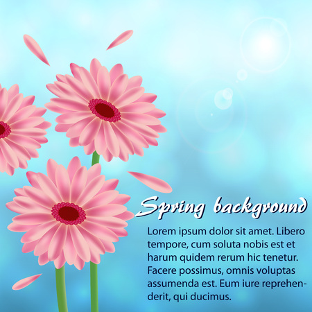 Abstract spring background with gerberas illustration