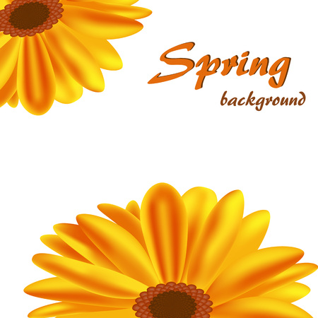 Abstract background with orange flowers.