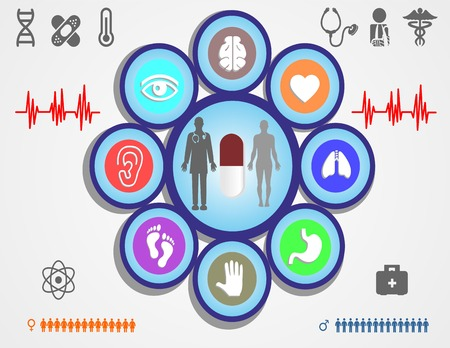 coraz�n y cerebro: Medicina, salud y cuidado de la salud iconos y elementos de datos, informaci�n gr�fica coraz�n, cerebro, ri�ones y otros �rganos humanos s�mbolos