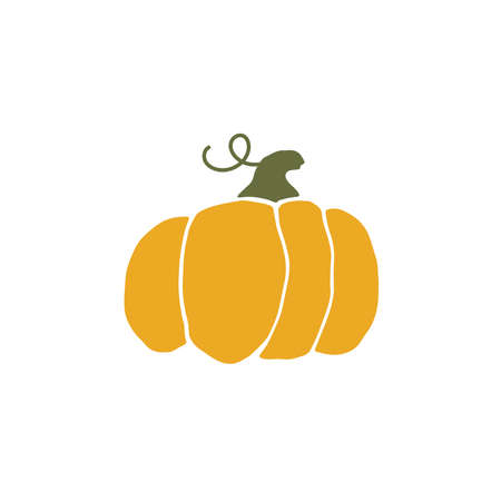 Pumpkin isolated on a white background. thanksgiving day. Halloween. Main symbol of the holiday.