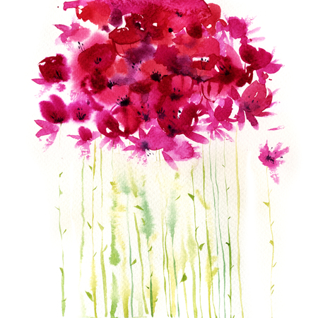 wildflowers: Watercolor pink wildflowers. Hand drawn illustration.